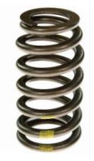 VS-1616 Melling valve spring